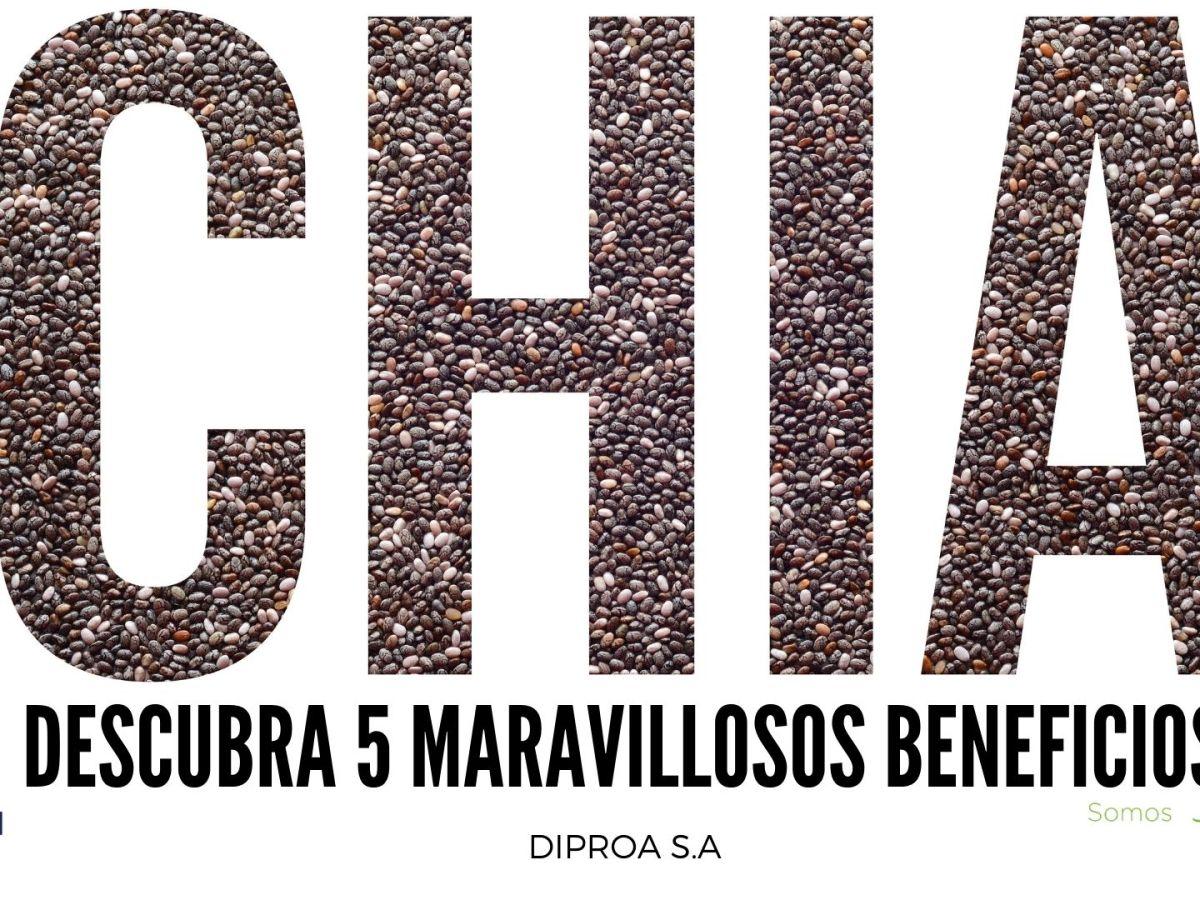 DIPROA S.A CHIA