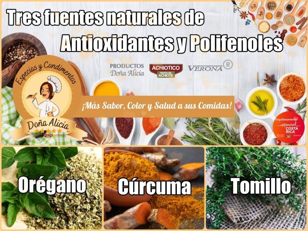 Las especias y condimentos, una fuente natural de antioxidantes y polifenoles.